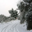 Tursi ricoperta di neve 9